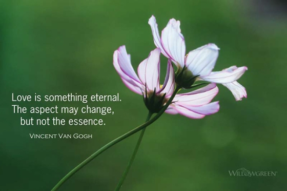 Love is something eternal. The aspect may change, but not the essence. Vincent Van Gogh