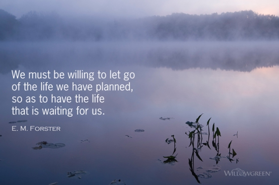 Willing to Let Go: A PhotoThought